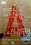 ALBION exhibition at the Cock n Bull Gallery