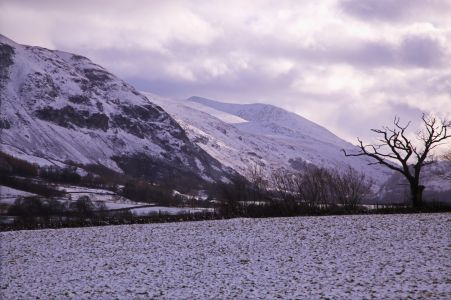 Snow field and mountain 2