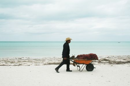 Holbox fruit seller