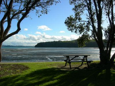 Beach at Matakana, New Zealand