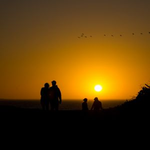 Couples Enjoying Sunset