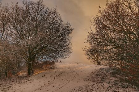 Early snow on the Clent Hills
