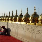 Meditation in the Golden Temple, Amristar