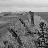 cliff top fencing