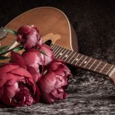 Peonies and Mandolin