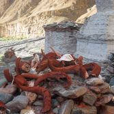 Ladakh 2015 - Devotional yak and goat horns