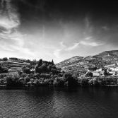 Douro Valley #1