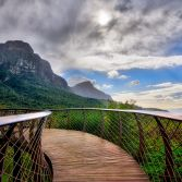 The Boomslang, Cape Town