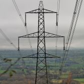 Dorset Pylon