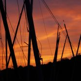 Sunset with Masts.