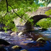 Dartmeet II