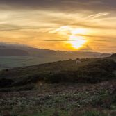 Sunset over purbeck hills and grazing horses.