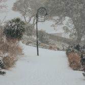 Snow in the Gardens