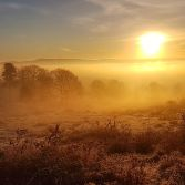 Sunrise at Kinver Edge