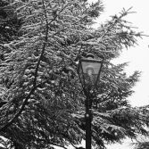 The Narnian Lamp Post